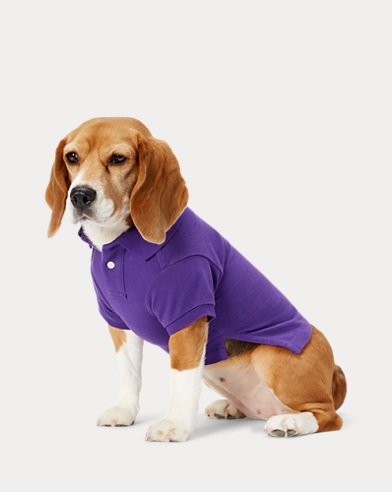 폴로 랄프로렌 강아지 빅포니 폴로셔츠 - 퍼플 Polo Ralph Lauren Big Pony Mesh Dog Polo Shirt,Vista Purple