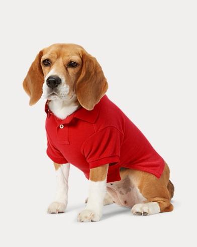 폴로 랄프로렌 강아지 코튼 피케 폴로셔츠 - 레드 Polo Ralph Lauren Cotton Pique Dog Polo Shirt,Red