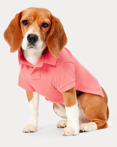 폴로 랄프로렌 강아지 코튼 피케 폴로셔츠 - 돌체핑크 Polo Ralph Lauren Cotton Pique Dog Polo Shirt,Dolce Pink