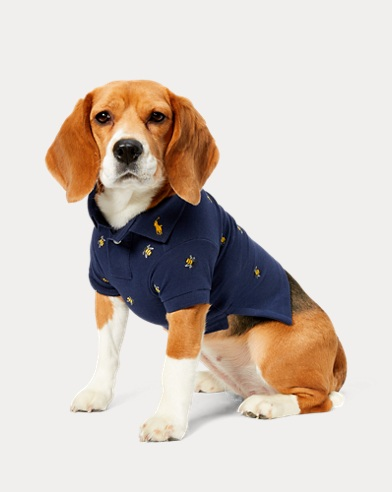 Bumblebee Dog Polo