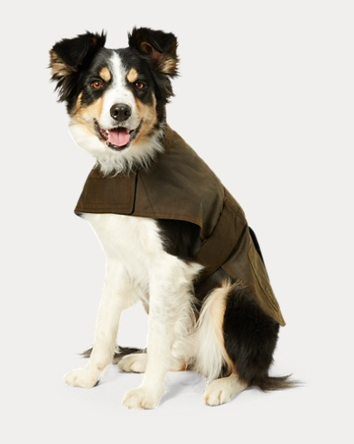 Coated Cotton Dog Jacket