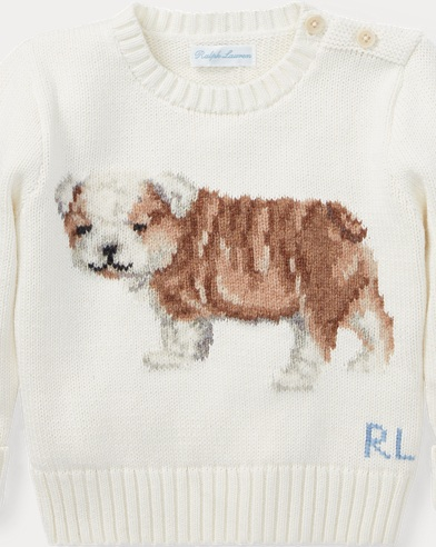 Dog Cotton-Wool Sweater