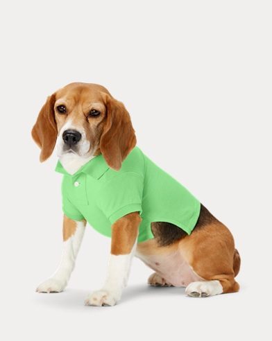 49f79e06d Big Pony Mesh Dog Polo Shirt. NEW ARRIVAL. Ralph Lauren Pet