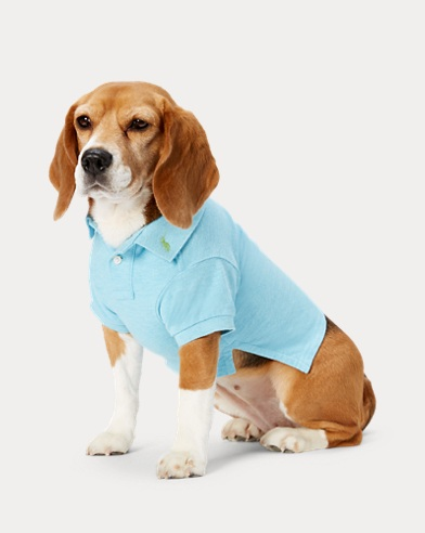 Polo pour chien en coton piqué