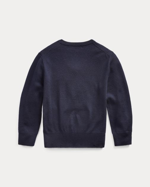 6e83747eff8 Merino Wool V-Neck Sweater