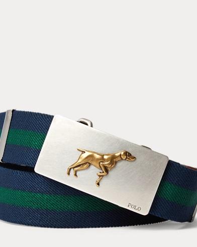 Dog-Plaque Belt