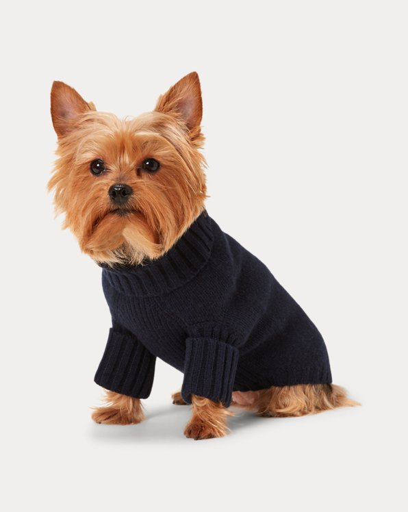 Bear Wool-Blend Dog Jumper